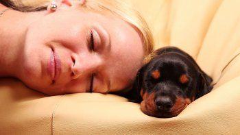 las mujeres duermen mejor con un perrito que con su pareja