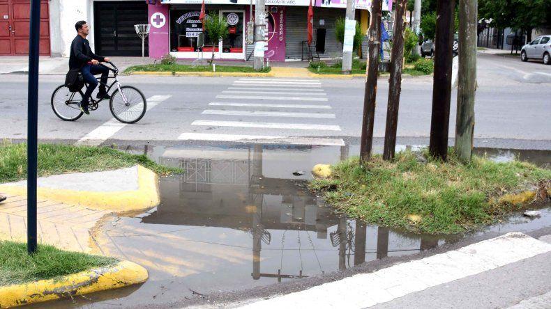 Vecinos de calle Fava reclaman que hace 20 días está roto un caño de agua