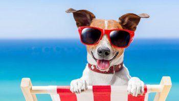 ¡todo listo para que sea un dia de playa!
