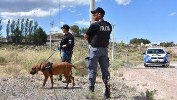suman a mora, la perra rastreadora, a la busqueda del joven estudiante desaparecido