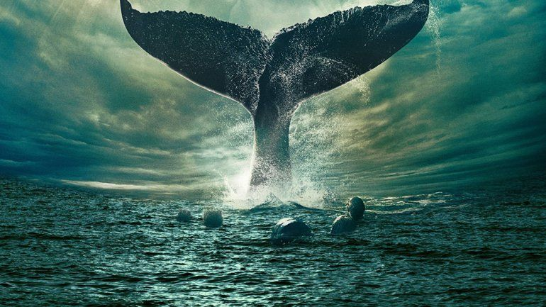 Creen que Moby Dick  pasó por nuestros mares