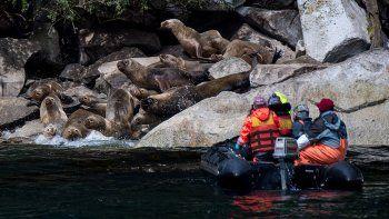 la patagonia chilena, un gran campo de investigacion