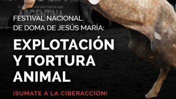 sacrificaron a un caballo en jesus maria y hay quejas