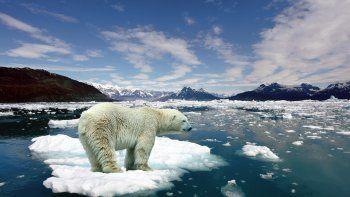 el calor del agua, la matriz del cambio climatico