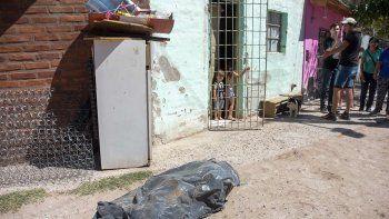 un barrio en panico: mueren mas perros y los vecinos no dejan salir a la calle a sus hijos