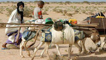 En África Central, el cambio climático también se siente mucho y las sequías son letales para los pastores nómades y sus rebaños. Este sistema, llamado Garbal, está respaldado por la ONU.
