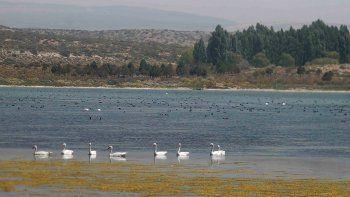 Laguna La Solitaria, el sitio de la polémica.