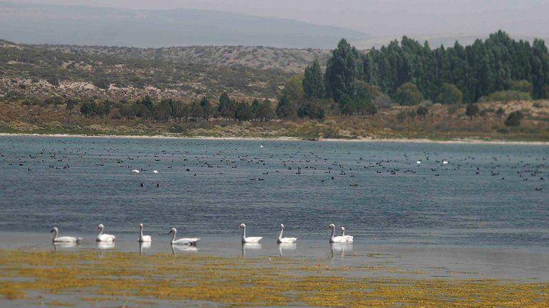 Laguna La Solitaria