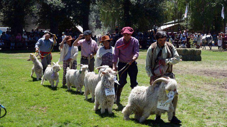 Todo el color de la 77ª edición de la Exposición Rural en Junín de los Andes