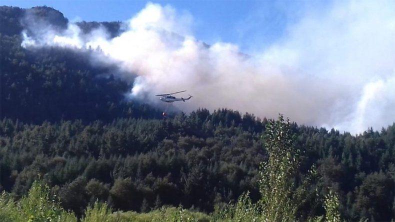 Combaten un incendio forestal cerca de Lago Puelo
