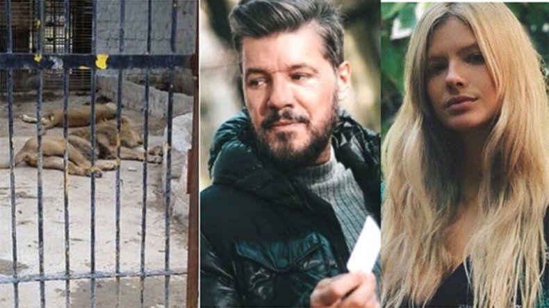 Famosos desesperados por el abandono de los animales en el Zoo de Santiago del Estero: Los están dejando morir!