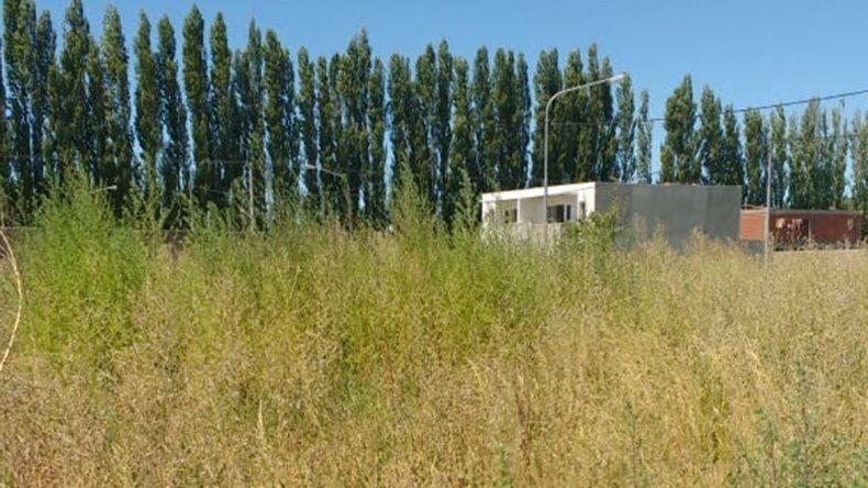 Vecinos de Plottier, indignados por ola de robos en Altos de Alberdi