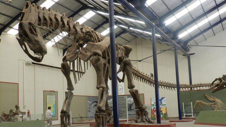 A treinta años del hallazgo del dino gigante de Huincul