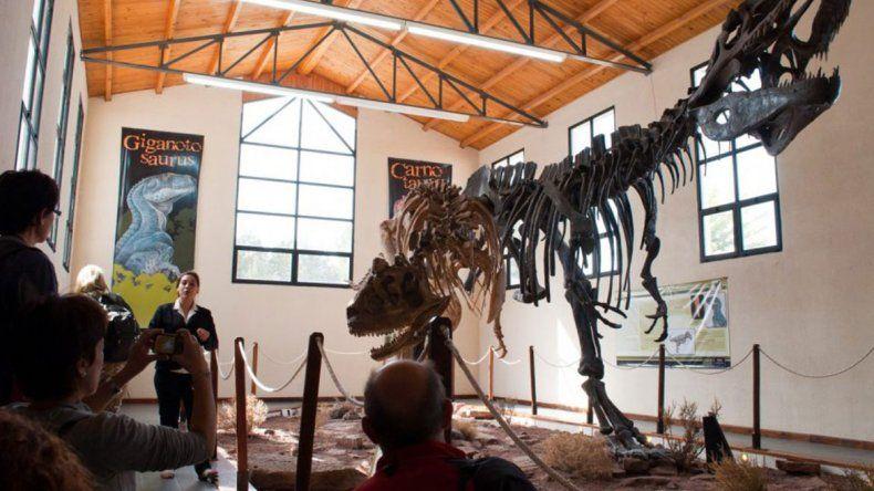 Presentan hallazgo de un nuevo dino en El Chocón
