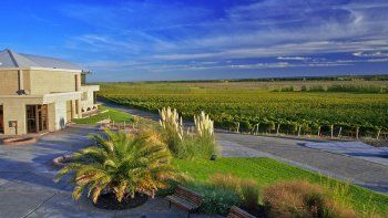 la extensa patagonia hoy ofrece diversidad en vinos argentinos