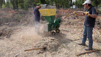 centenario ya produce compost de sus residuos organicos