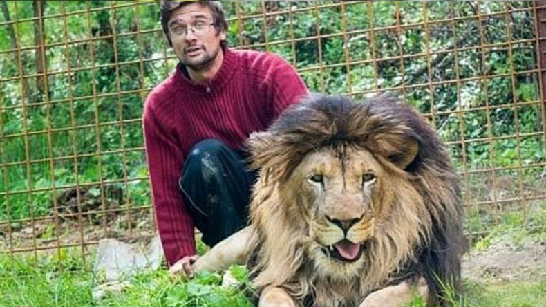 Un hombre murió al ser devorado por un león que criaba en su casa