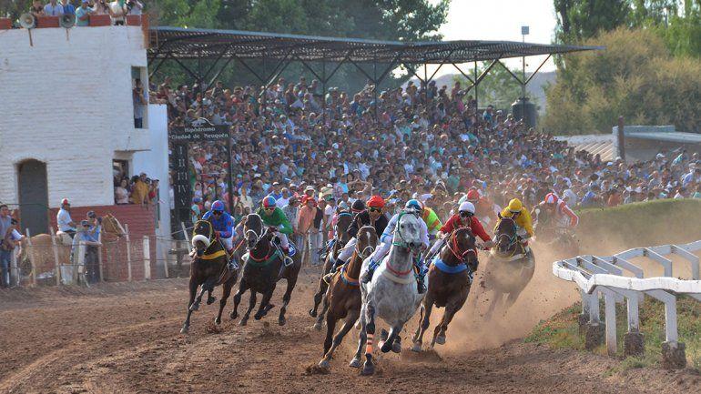Animalistas van contra las carreras de caballos
