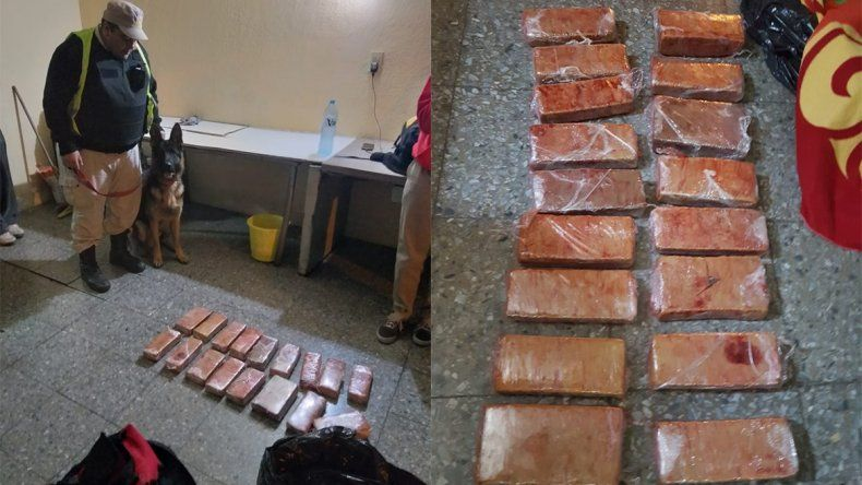 Encontraron más de 10 kilos de marihuana en un micro que venía a Neuquén