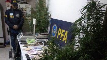 hallan droga, plata y elementos de corte en kiosco narco de centenario