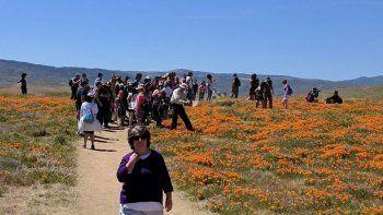 una ciudad califico de insoportable la invasion de turistas