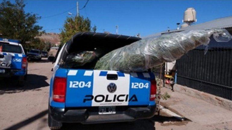 Fueron por un robo y dieron con marihuana