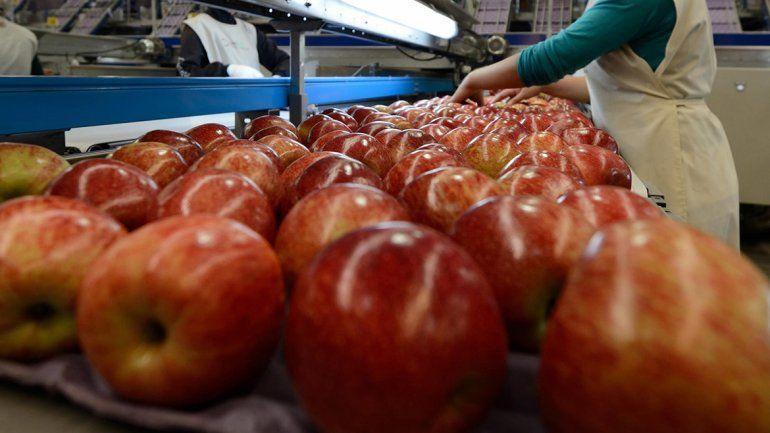 La veda a la venta de fruta a Brasil golpea a la región