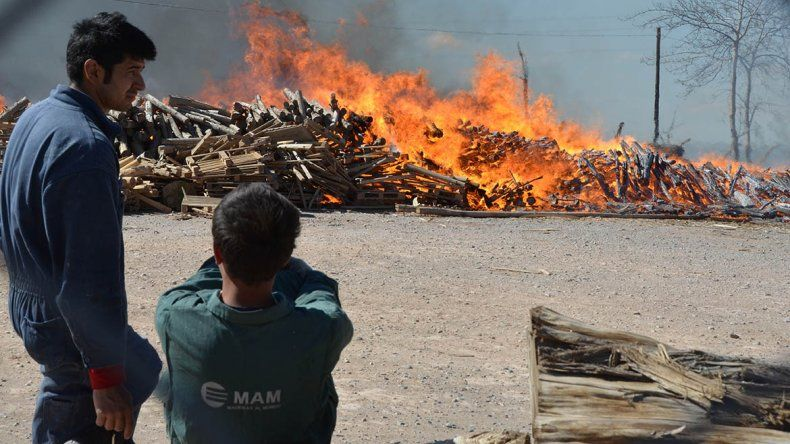 Hubo alarma por un impresionante incendio en la maderera MAM