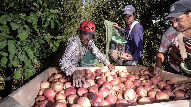 Prorrogan la ley de emergencia para fruticultores