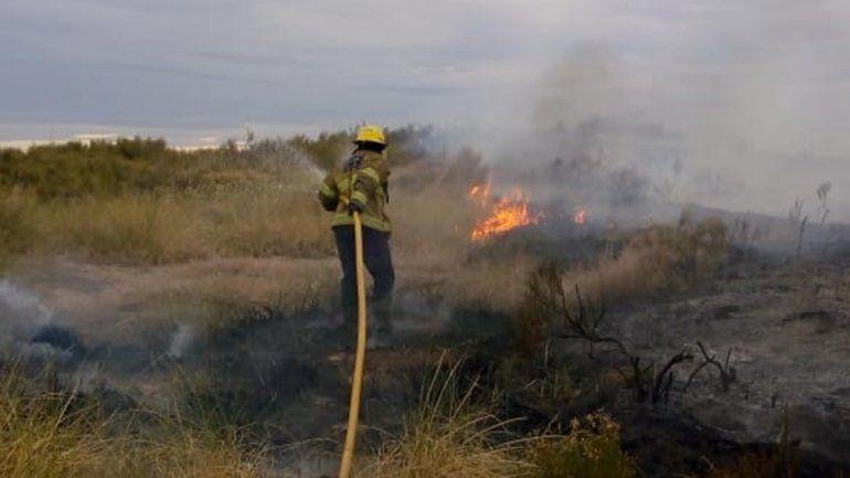 Bomberos sofocaron un incendio de pastizales en barrio El Ceibal