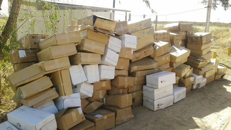 Decomisaron dos toneladas y media de pescado que venía para Neuquén