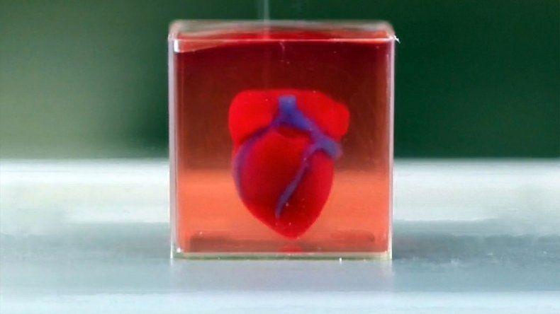 Imprimieron un corazón con tejidos y vasos en 3D