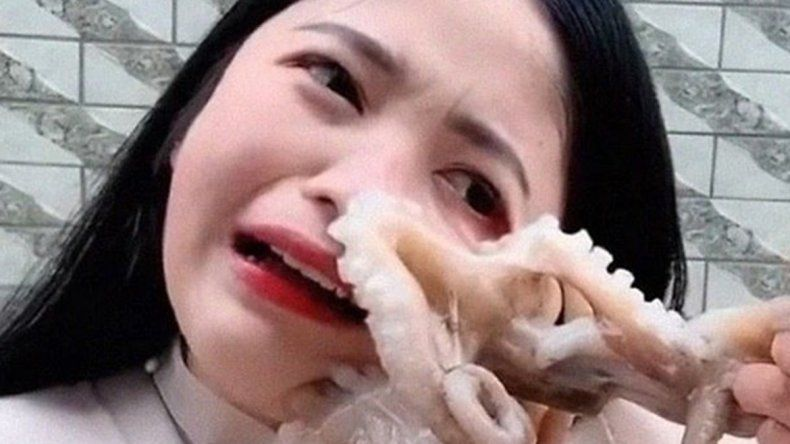 Una youtuber se quiso comer un pulpo vivo y el animal le succionó la cara