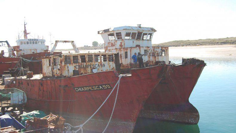 Hunden barco en el parque submarino de Las Grutas