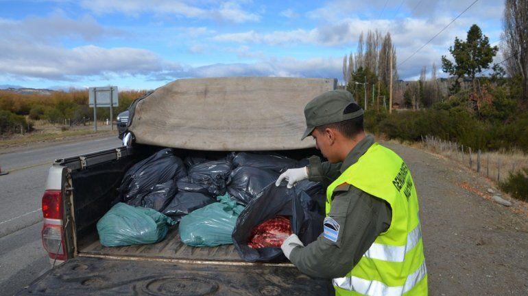Los atrapan llevando 300 kilos de carne de ciervo y jabalí sin permisos