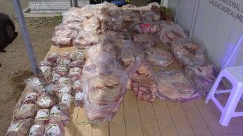 decomisaron 400 kilos de carne que venian a la region