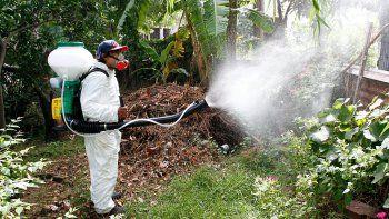 alerta dengue: hay mas de 1000 casos nuevos en el pais