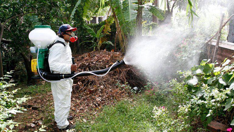Alerta dengue: hay más de 1000 casos nuevos en el país