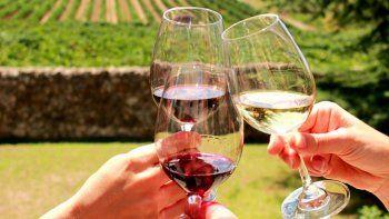radiografia del turismo del vino: un negocio en alza