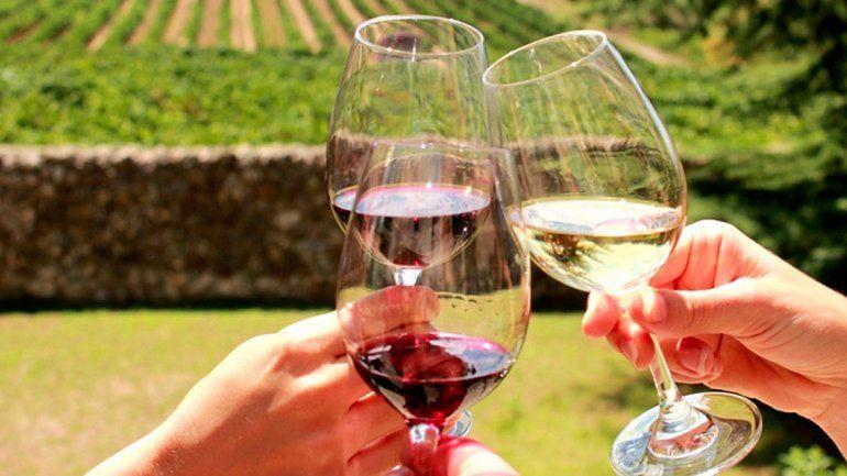 Radiografía del turismo del vino: un negocio en alza