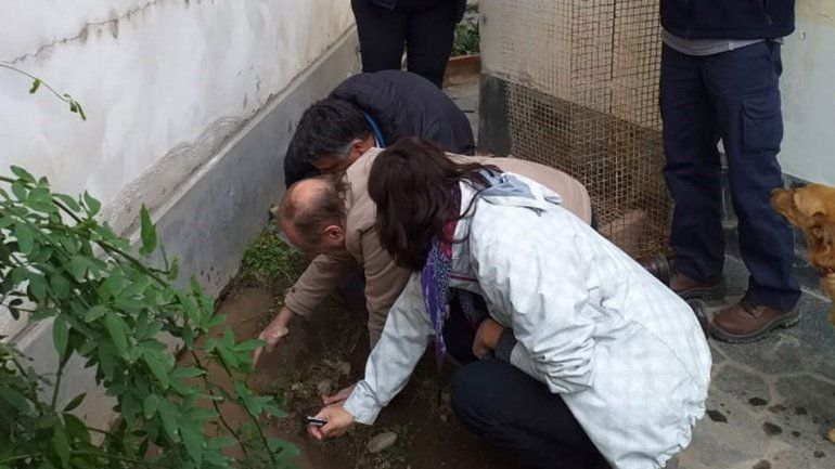 Un río subterráneo afecta a seis casas en Santa Genoveva
