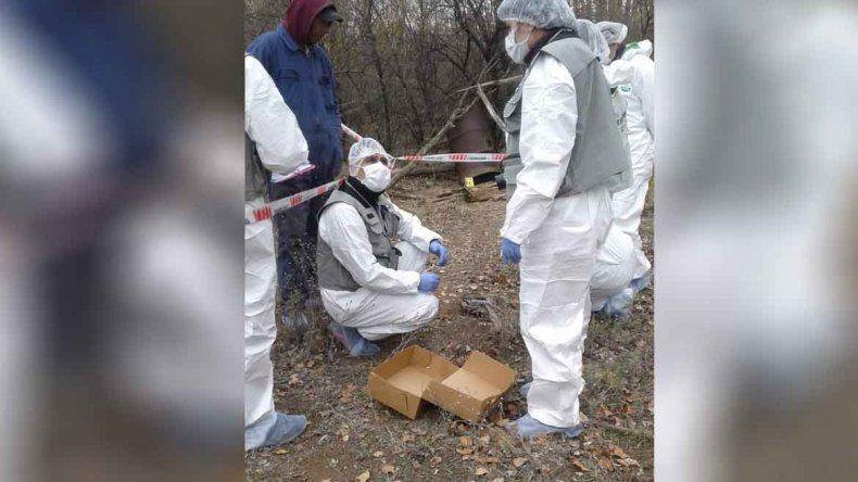 Hallan huesos humanos en El Chañar e investigan un crimen