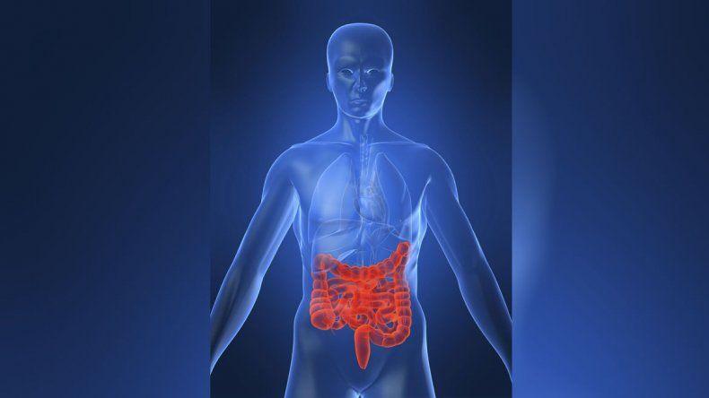 Enfermedad de Crohn, un mal del que se sabe poco