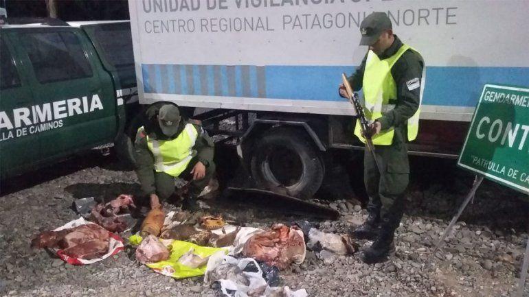 Intentaron contrabandear carne de animales silvestres y los atraparon