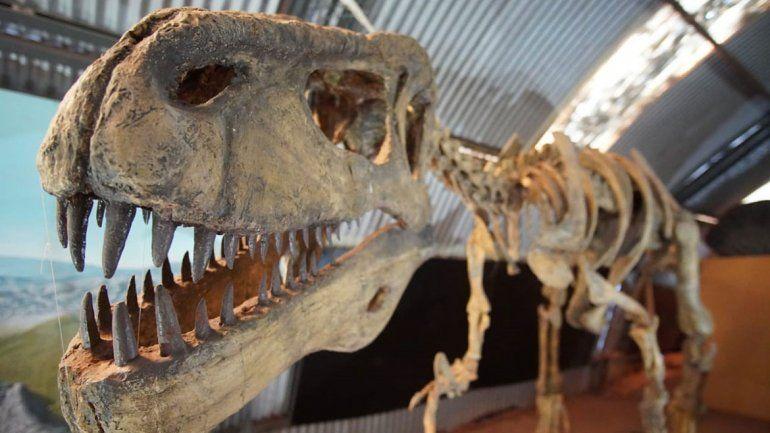 El turismo paleontológico busca conquistar a todos con Proyecto Dino