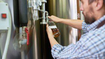 quieren regular la elaboracion de cerveza artesanal