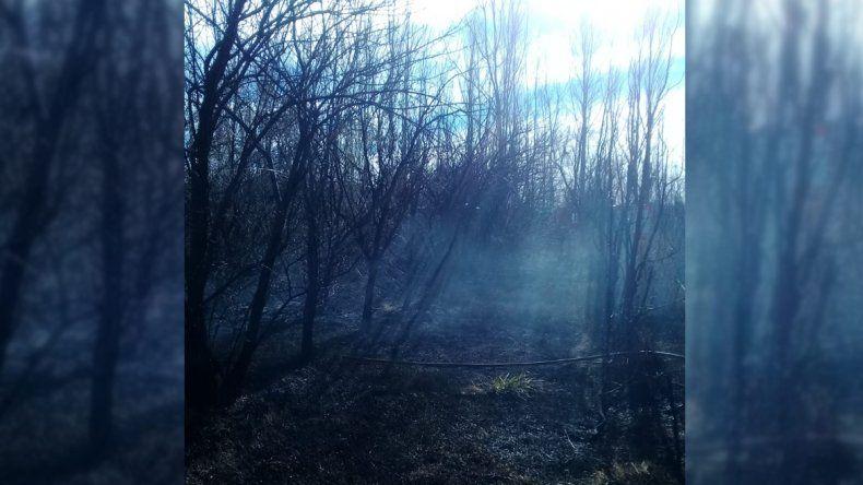 Quemaron pastizales en medio del temporal de viento y provocaron un gran incendio