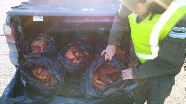 Lo atrapan llevando 300 kilos de carne en la caja de la camioneta