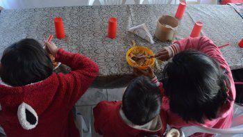 preocupacion de organizaciones sociales por indices de malnutricion