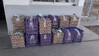 trafico de huevos: decomisan 300 docenas valuadas en $20 mil
